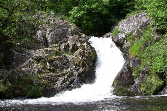 Il Parco Nazionale delle Foreste Casentinesi, Campigna e Monte Falterona
