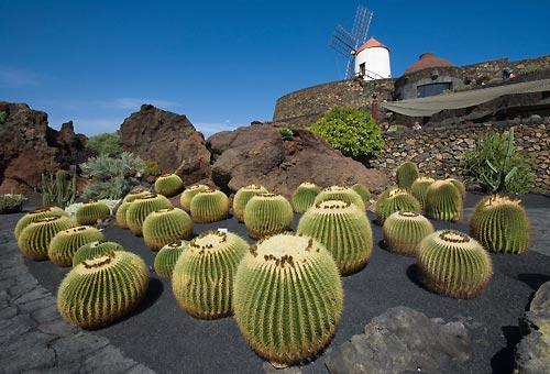 Il giardino dei vulcani: benvenuti a Lanzarote