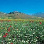 Il Parco Nazionale dei Sibillini
