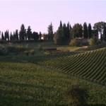 Gli agriturismi in Toscana: una vacanza tra tradizione e arte