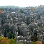La foresta di Pietra una delle meraviglie naturali della Terra