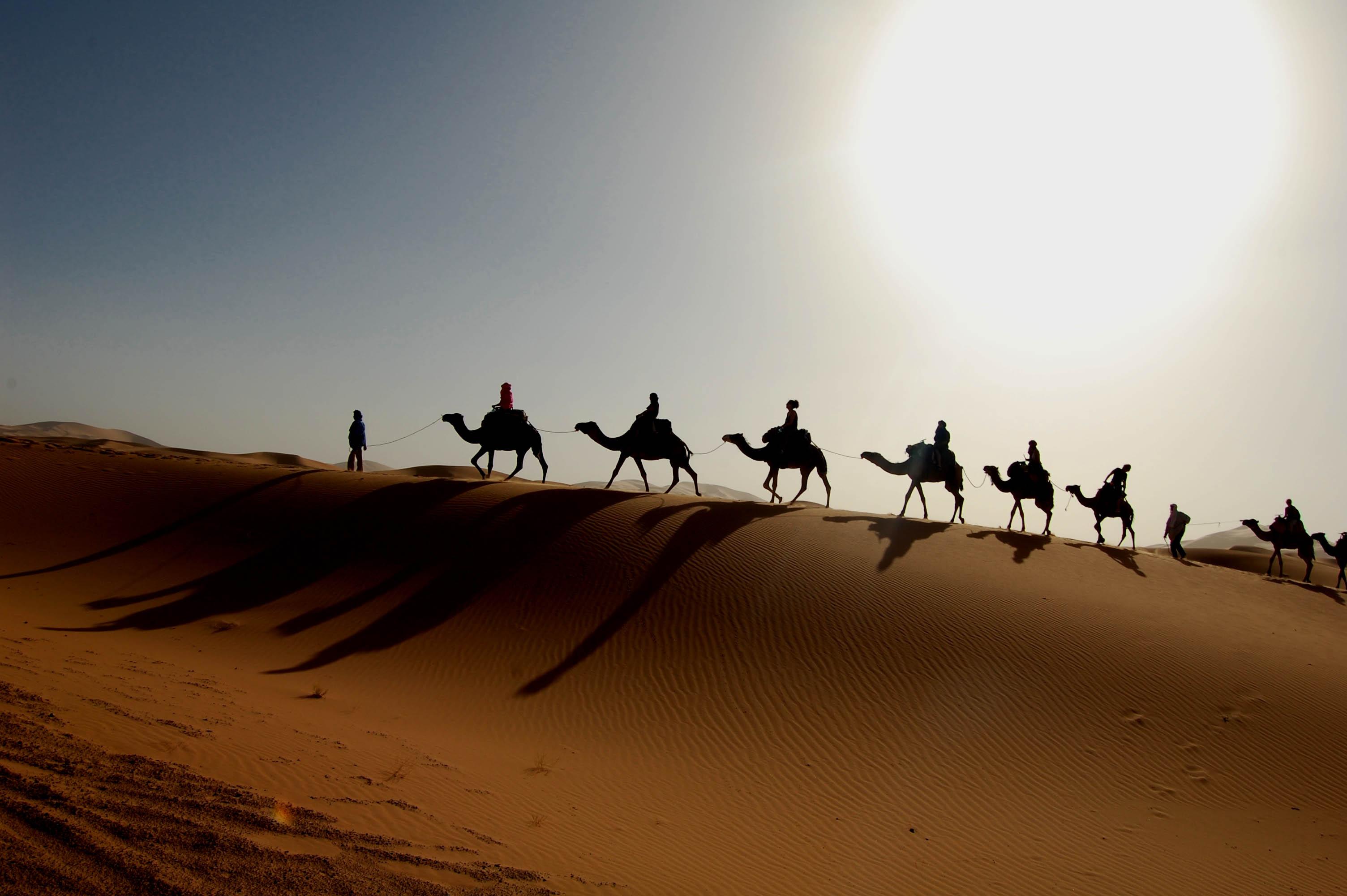 Spedizioni nel deserto del Sahara