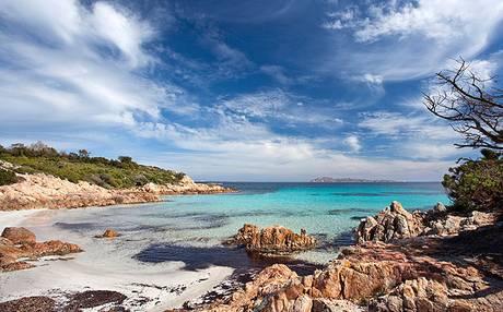 Profumi di Sardegna